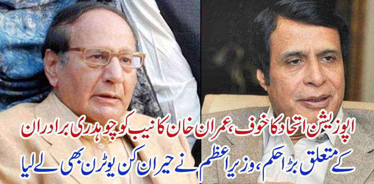 chaudhry brothers and nab
