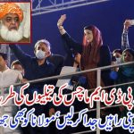 fazal ur rehman and mohsin dawar and pdm