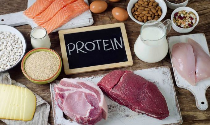 foods of protein