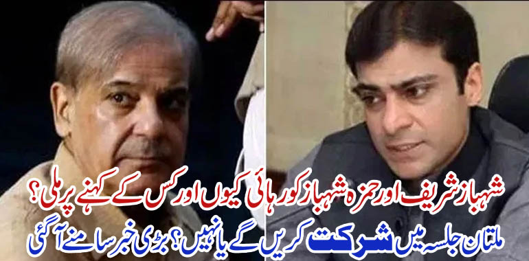 shahbaz sharif and hamza shahbaz