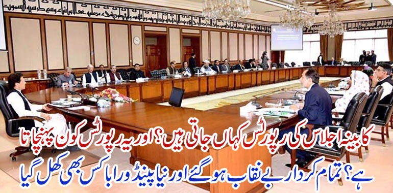 federal cabinet reports