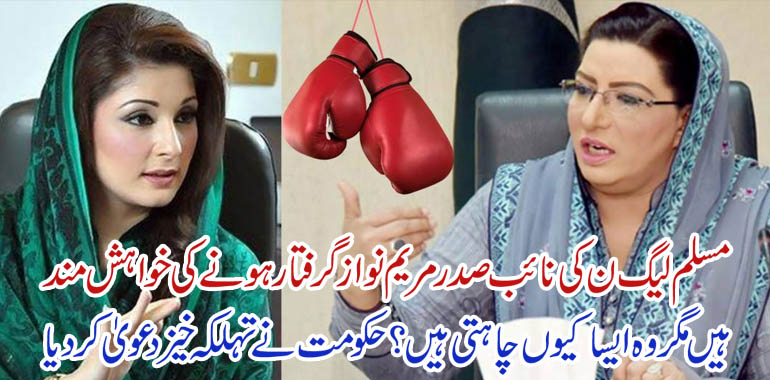 maryam nawaz and firdous ashiq awan