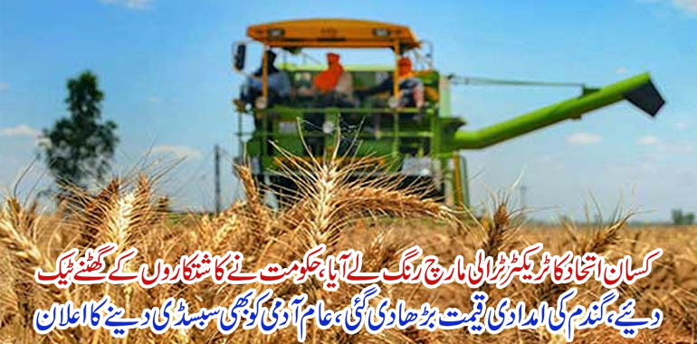 Wheat support price per 40 kg increes