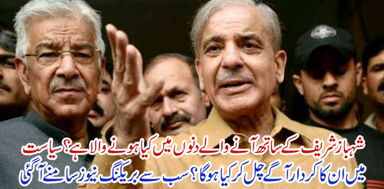 shahbaz sharif bail