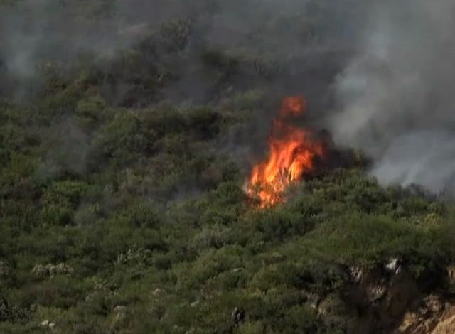 fire in marghalla hills